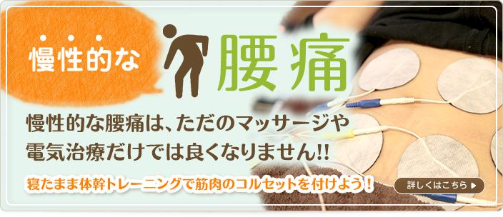 慢性的な腰痛|成田市ま心堂整骨院